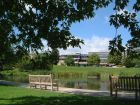miniatura University of Bath - campus lake scene